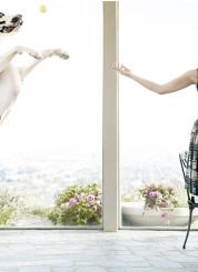 Katherine Heigl and her great dane