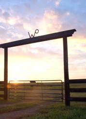 WP ranch near Stillwater, OK