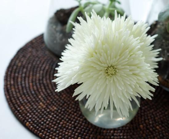 white flowers in bud vase