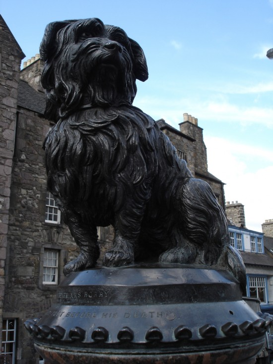 Greyfriars bobby dog statue in edinburgh