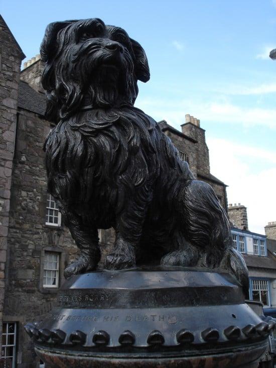 Greyfriars bobby dog statue in edinburgh