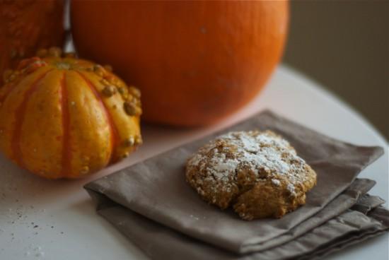 pumpkin cookie photo
