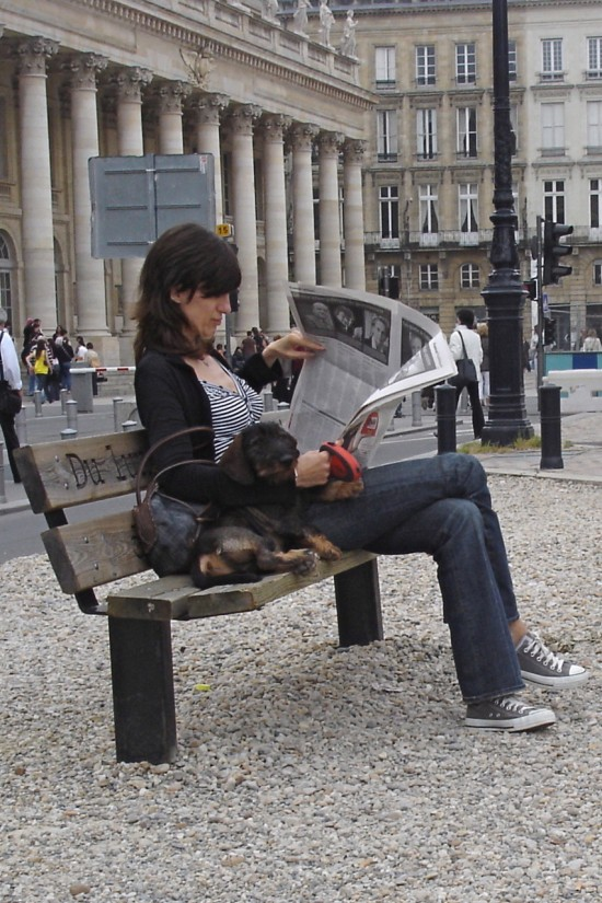 woman reading newspaper with dog in bordeaux