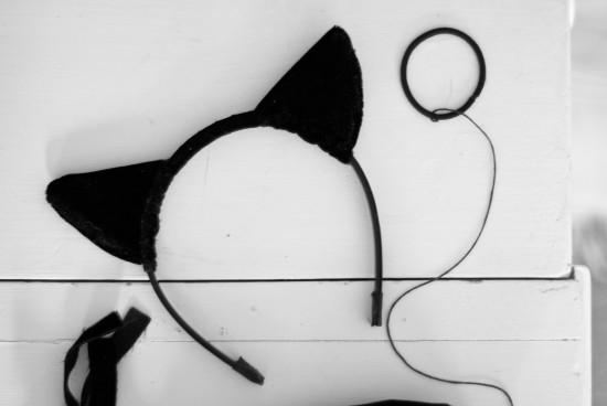 do it yourself cat ears