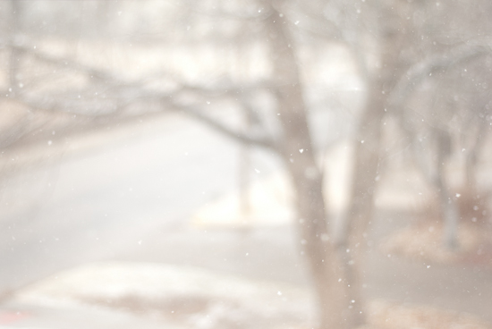 snow from my living room window