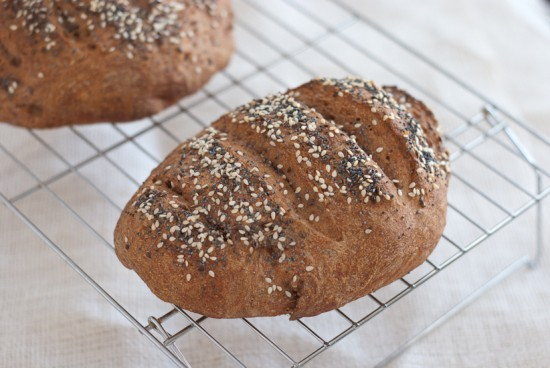 Healthy Bread in 5 Minutes a Day master recipe loaf