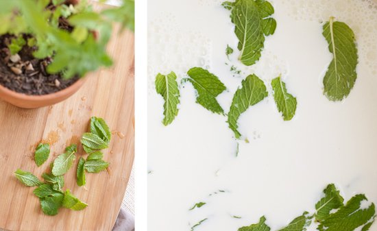 fresh spearmint and cream