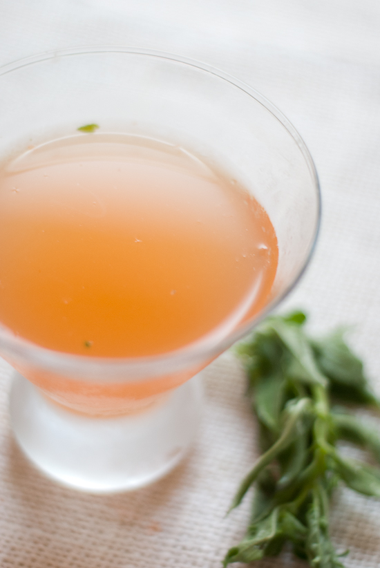 beautiful red bell cocktail, inspired by Manifesto in Kansas City