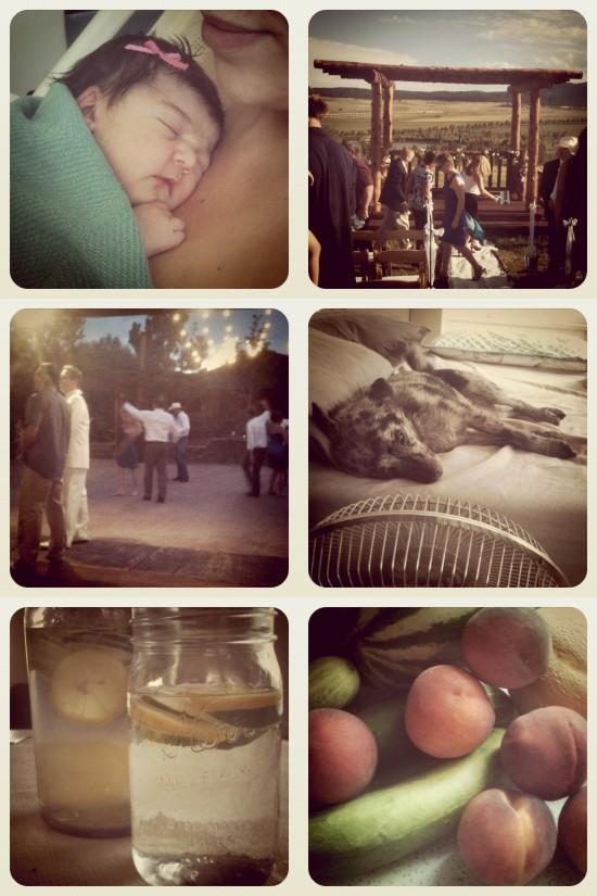 summer instagram collage