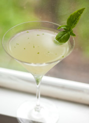basil gimlet recipe
