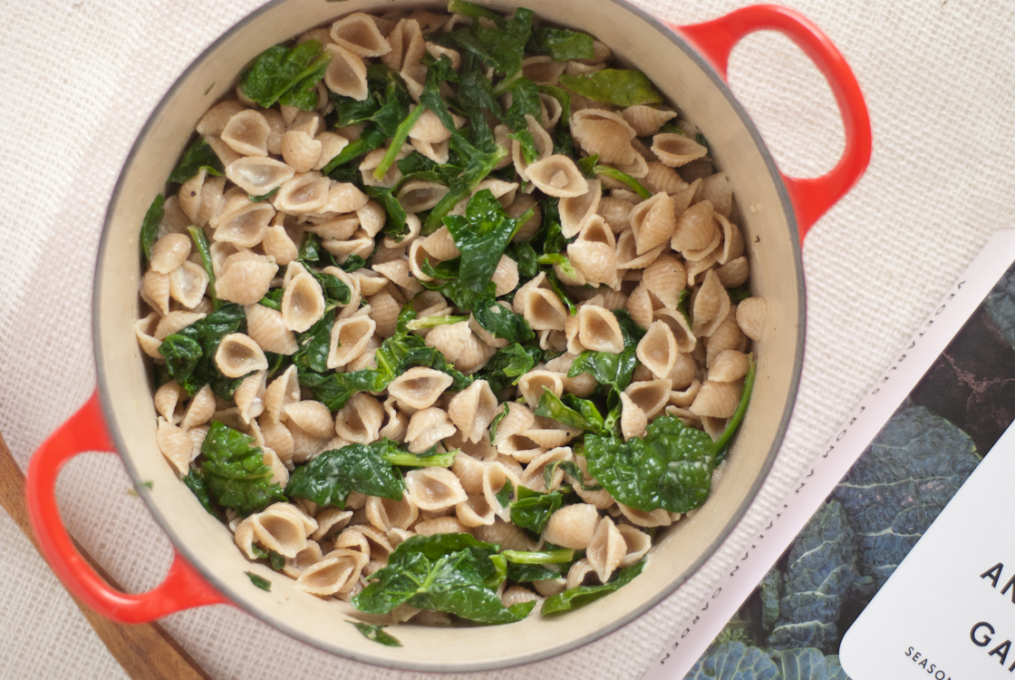 Orecchiette With Spinach And Gorgonzola Sauce Recipe