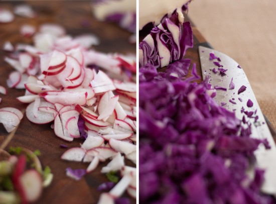 sliced radishes and purple cabbage