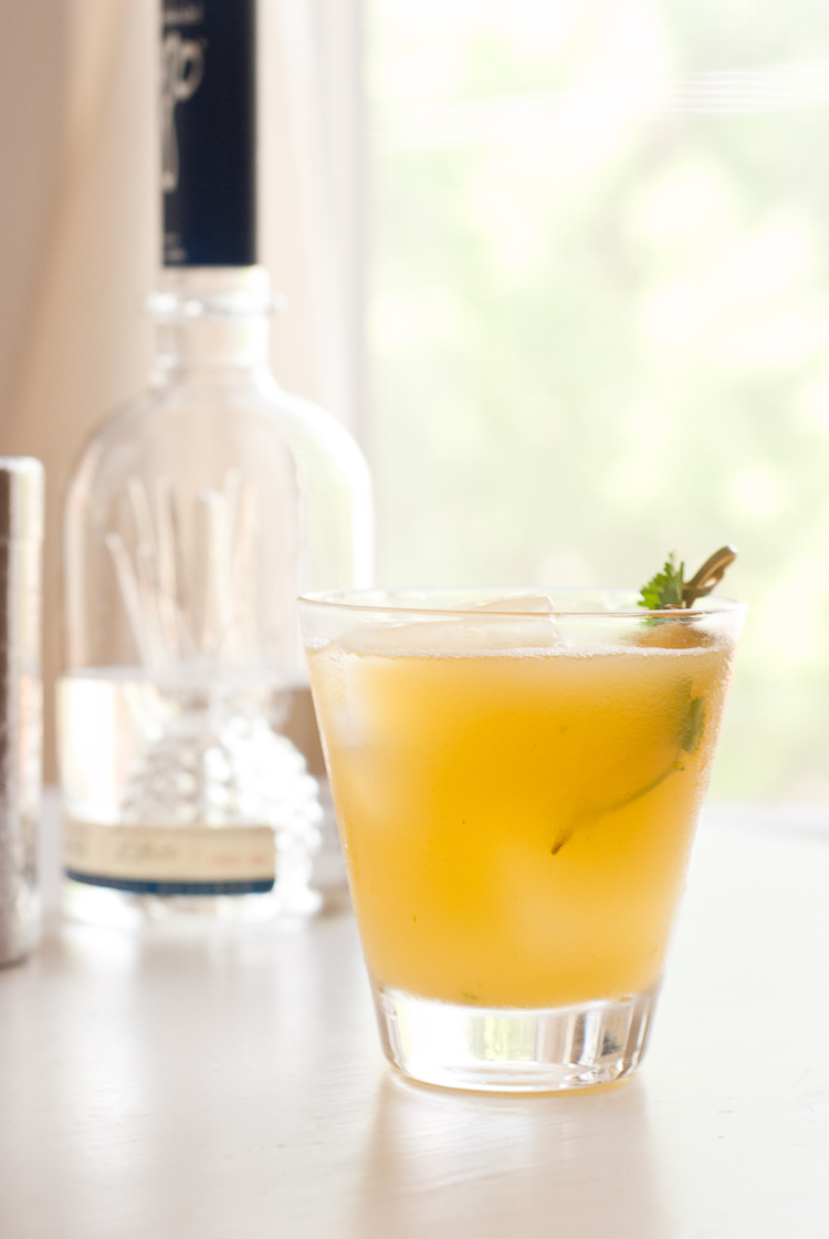 Pineapple Cilantro Serrano Cocktail Recipe — Dishmaps