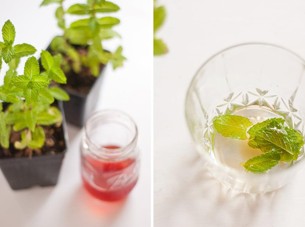 Strawberry-Infused Bourbon Recipe - Strawberry Mint Julep