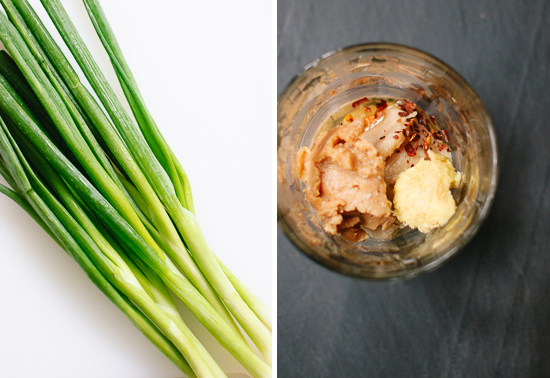 green onions and sesame dressing ingredients