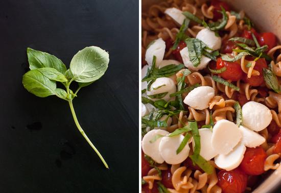 basil, mozzarella balls and pasta salad