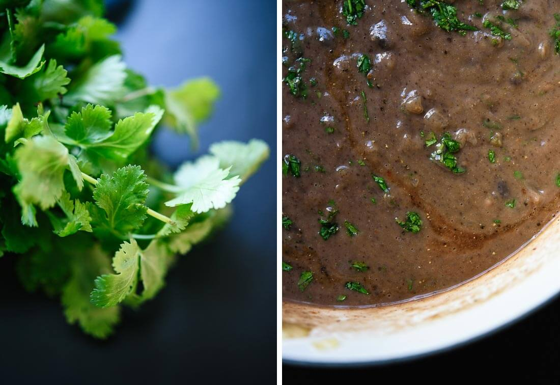 cilantro black bean soup