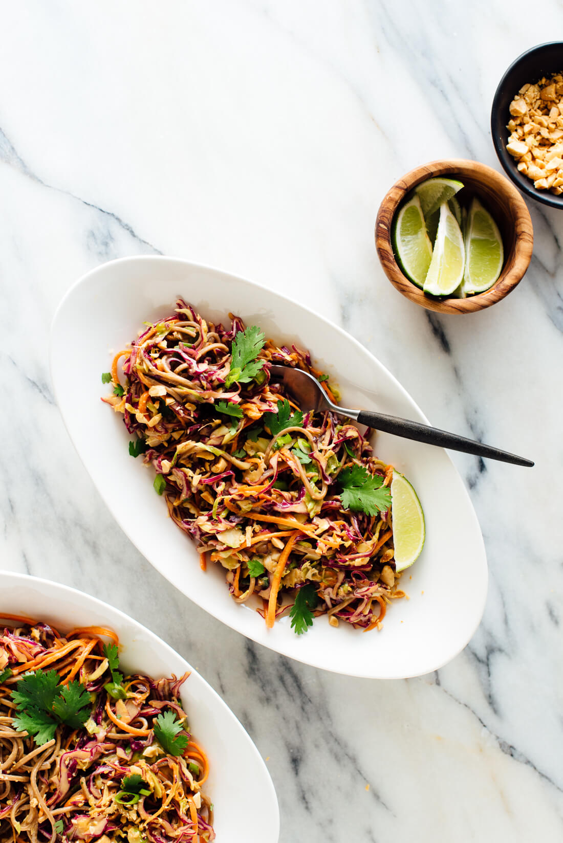 peanut soba noodles slaw recipe