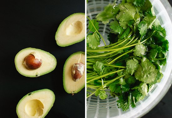 avocados and cilantro