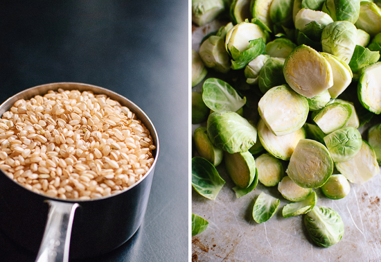 brown rice and brussels sprouts