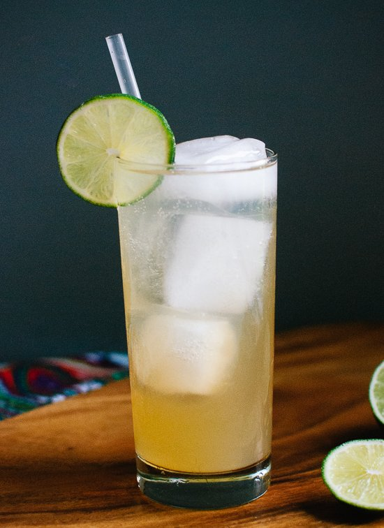 Moscow mule made with ginger kombucha! cookieandkate.com
