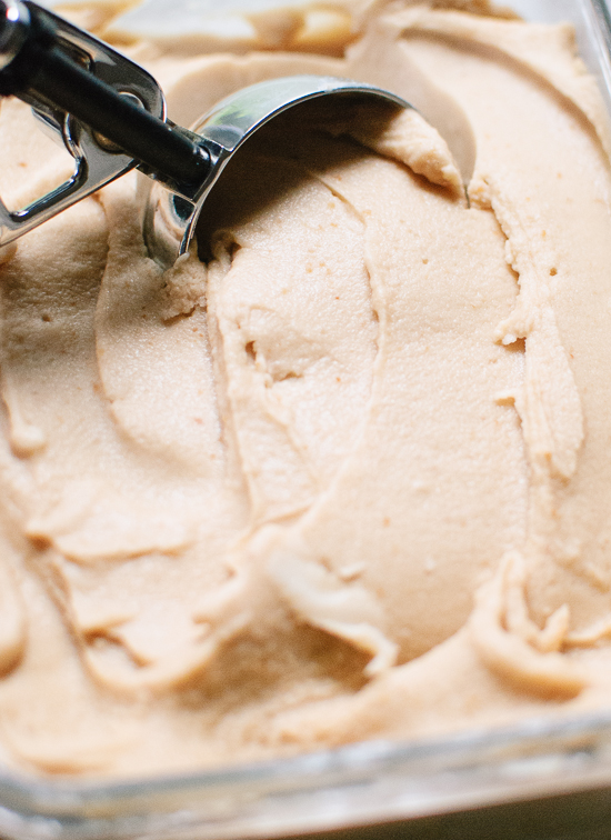Dairy-free peanut butter and honey ice cream - cookieandkate.com