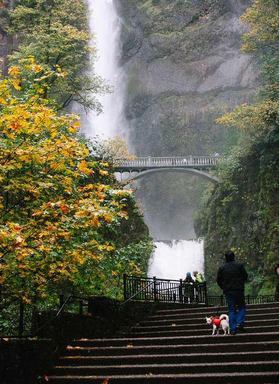 Multnomah Falls, outside of Portland