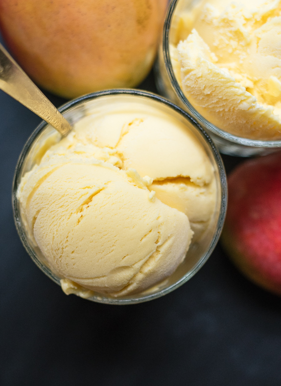 Homemade mango fro-yo recipe - cookieandkate.com
