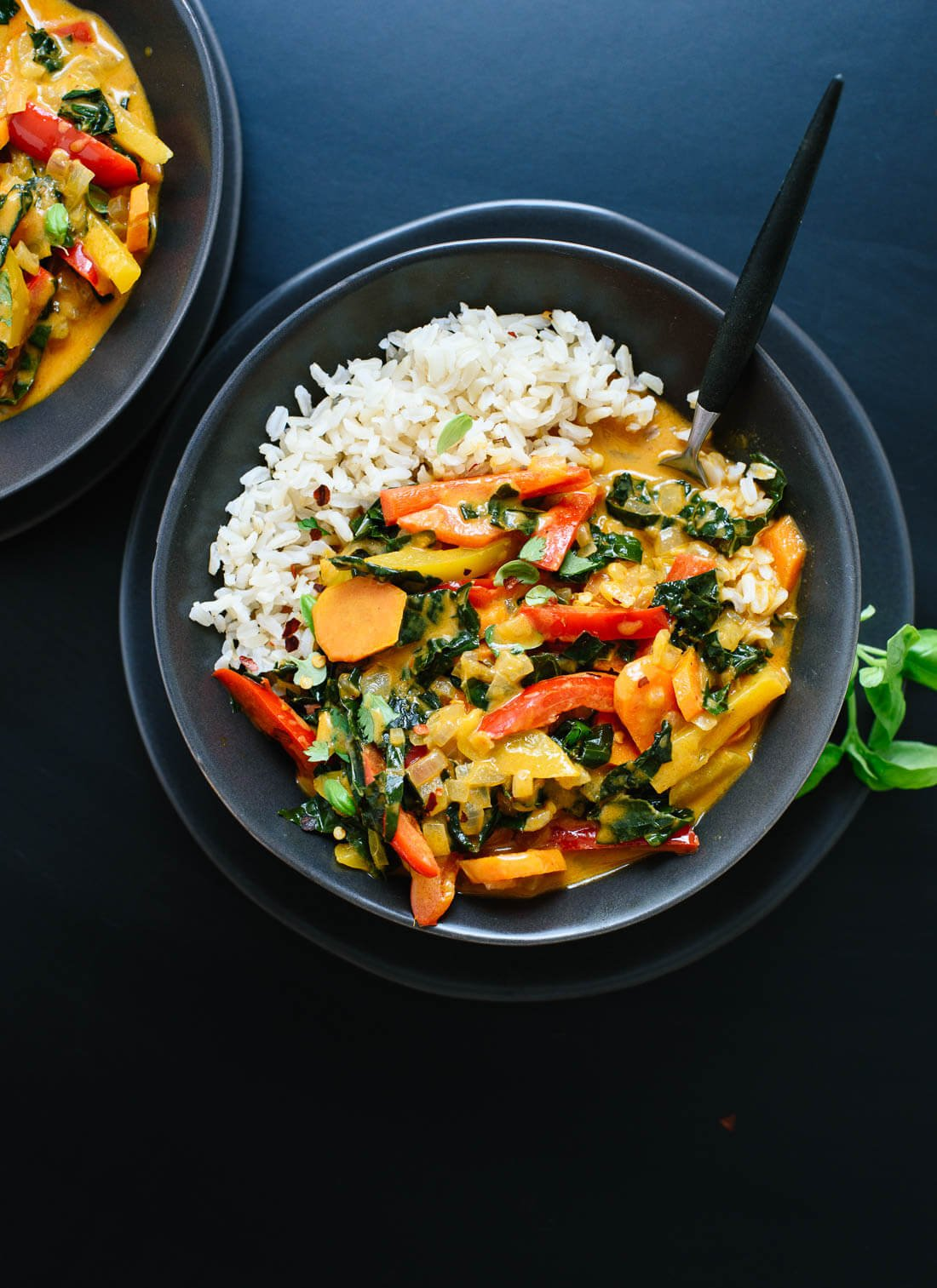 Curry recipes bbc good food inducedfo linkedcurry recipes bbc good foodbeef curry recipes bbc good foodchicken curry recipes bbc good foodvegetarian curry recipes bbc good foodslow cooker forumfinder Image collections