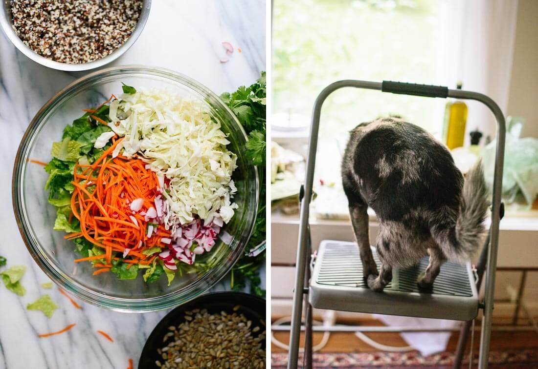 how to make mega crunch salad