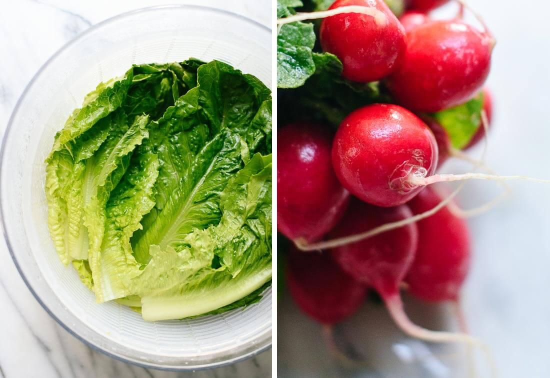 romaine and radishes