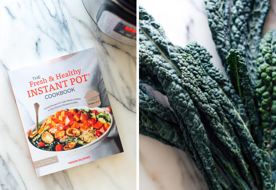 fresh and healthy instant pot cookbook