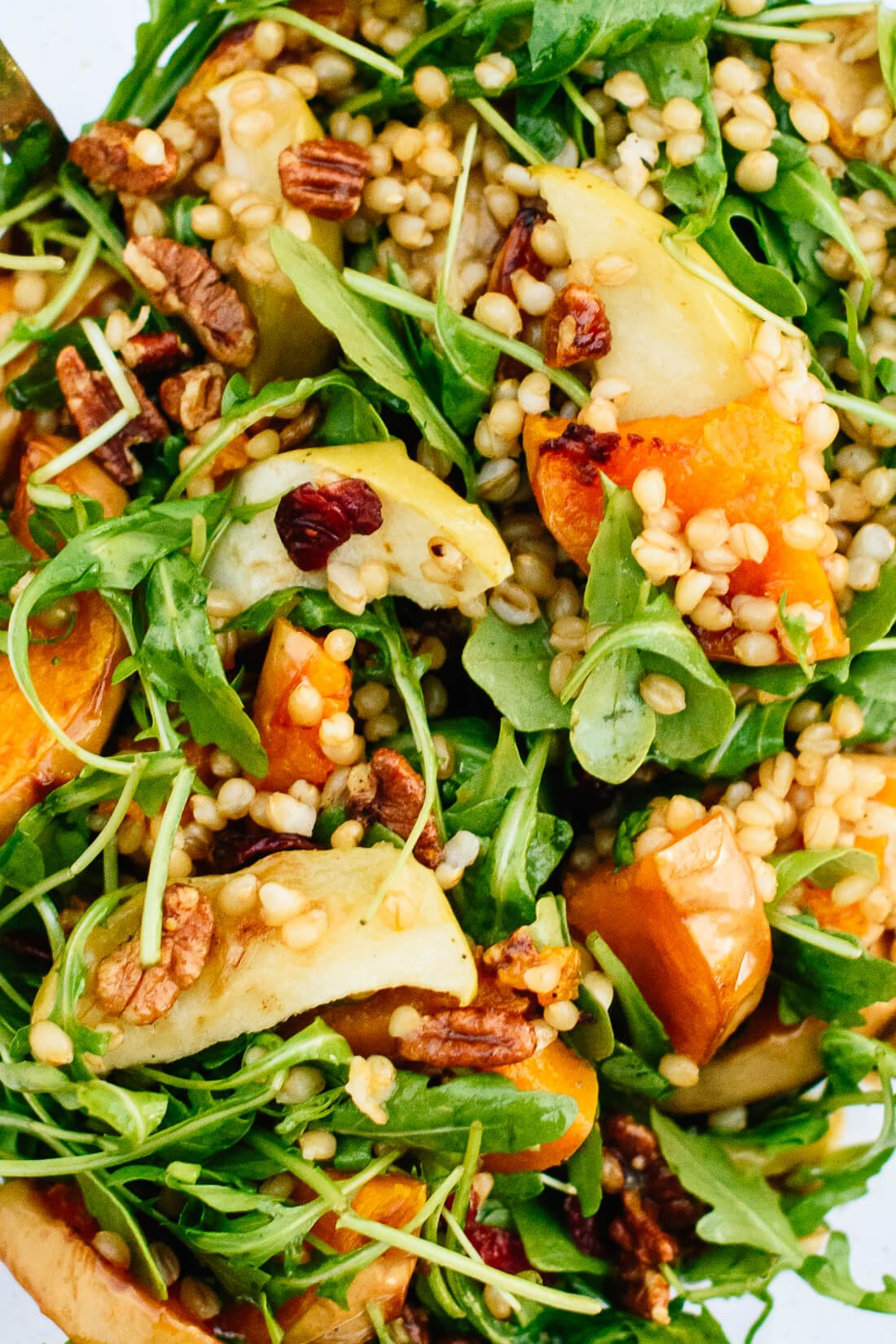 Roasted butternut squash, apple and wheat berry salad recipe