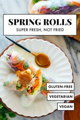 vegetarian/vegan spring rolls recipe